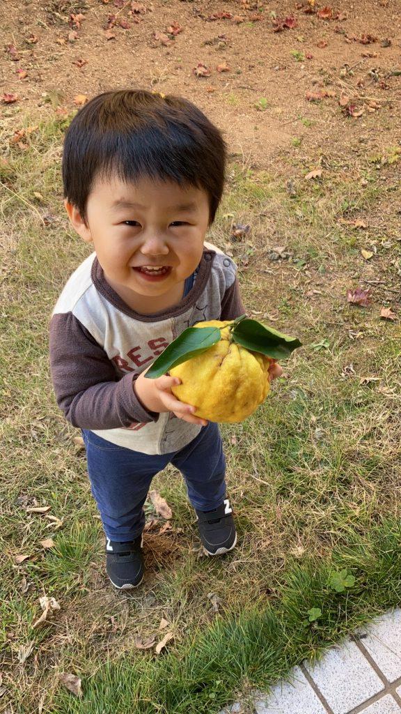 孫と鬼柚子