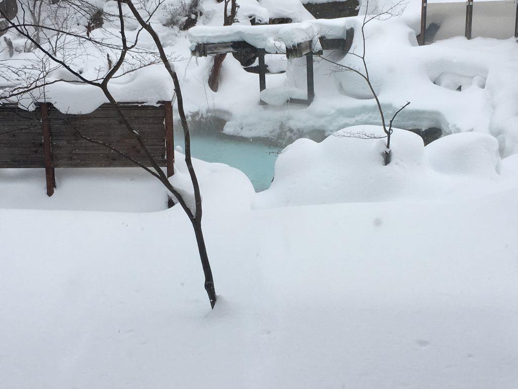 泡の湯旅館の大露天風呂の一部